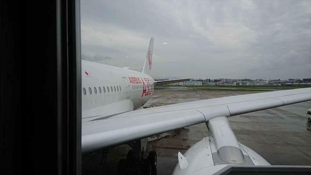 エアバスA350-900 JAL初就航便 JL317 01SEP2019 羽田~福岡