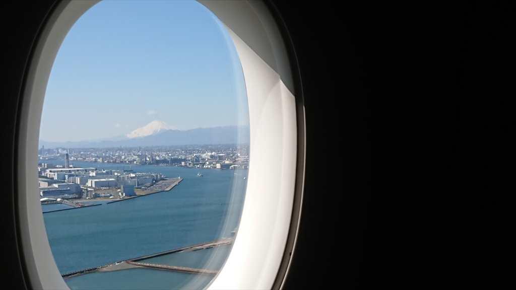 JAL JL902 沖縄 - 羽田 ファーストクラス 搭乗記 09FEB20