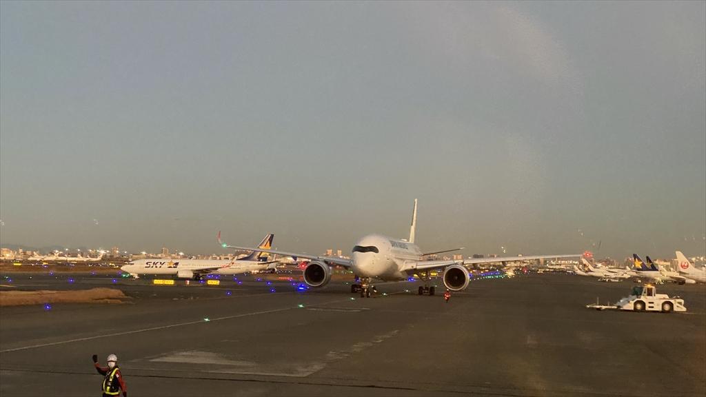 JAL JL101 羽田 ~ 伊丹 普通席 搭乗記 01JAN21 初日の出フライト