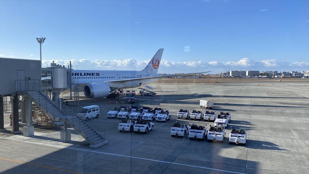 ボーイングB787-800型機 JL110 伊丹~羽田 ファーストクラス 搭乗記 01JAN21