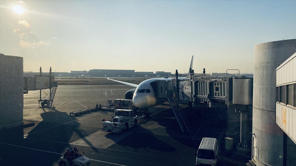 ボーイングB787-800型機 JL325 羽田~福岡 ファーストクラス 搭乗記 18JAN21