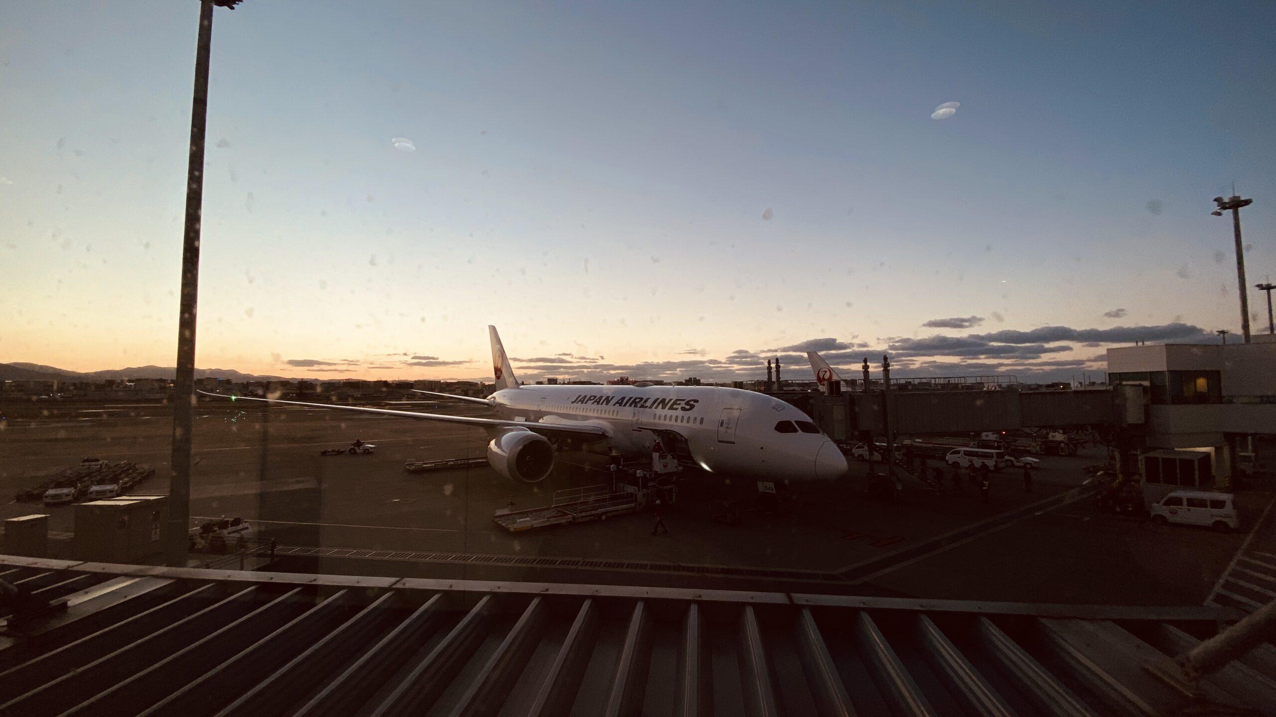 ボーイングB787-800型機 JL325 羽田~福岡 ファーストクラス 搭乗記 19JAN21