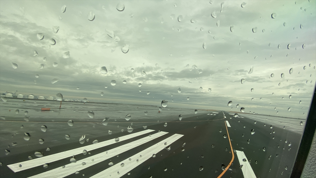 ボーイングB787-800型機 JL313 羽田~福岡 ファーストクラス 搭乗記 02FEB21