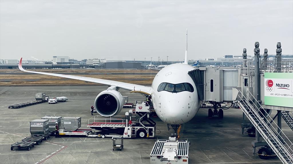 エアバスA350-900型機 JL509 羽田~札幌(新千歳) ファーストクラス 搭乗記 14FEB21