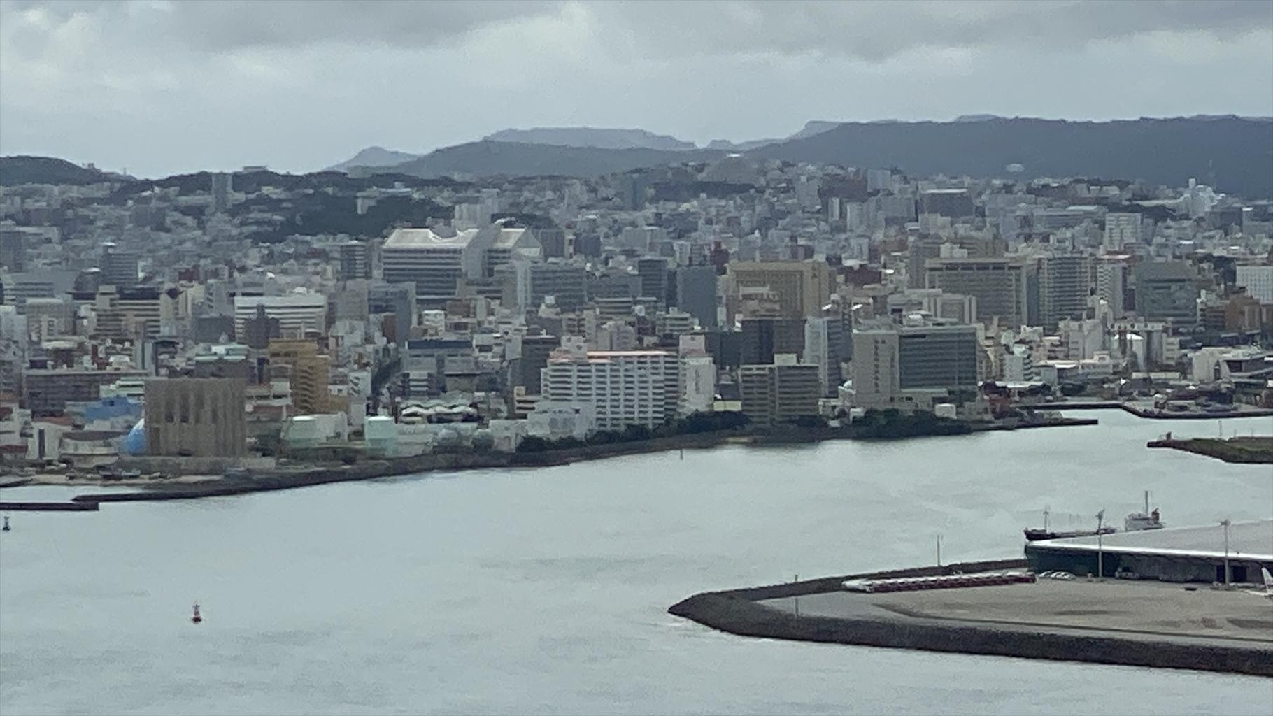NU043 02JUN21 中部(名古屋)~沖縄(那覇) クラスJ