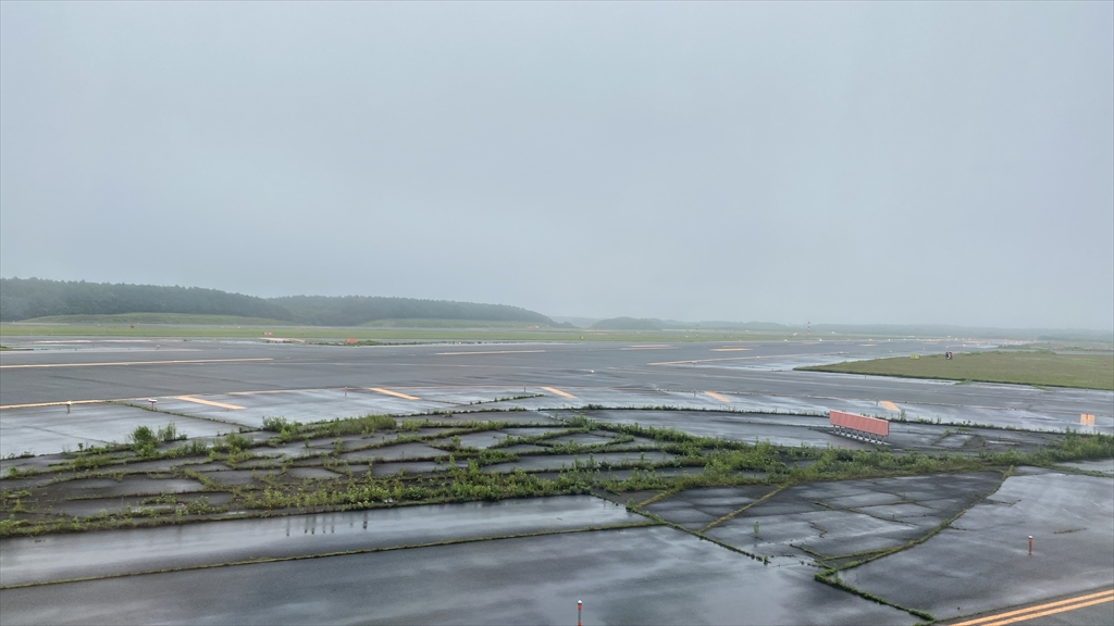 エアバスA350-900型機 JL503 羽田~札幌(新千歳) ファーストクラス 搭乗記 07JUL21