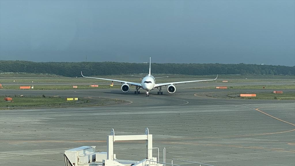 エアバスA350-900型機 JL522 札幌(新千歳)~羽田