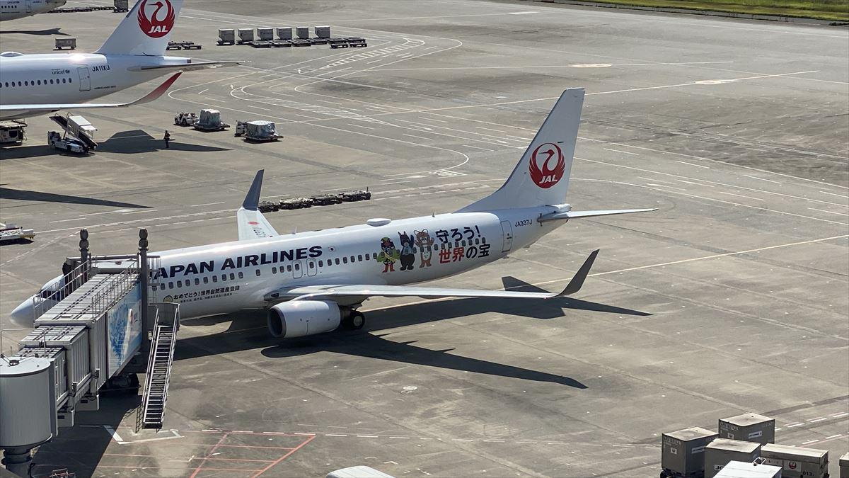 羽田空港さんぽ